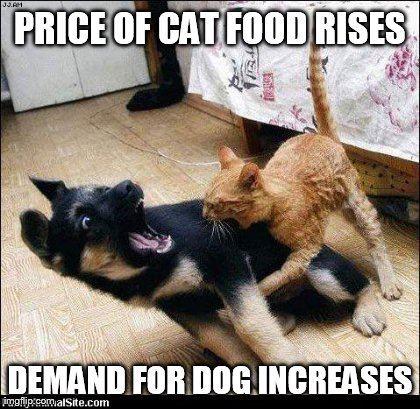 the frugality of cats demand economics memes,Equilibrium Memes
